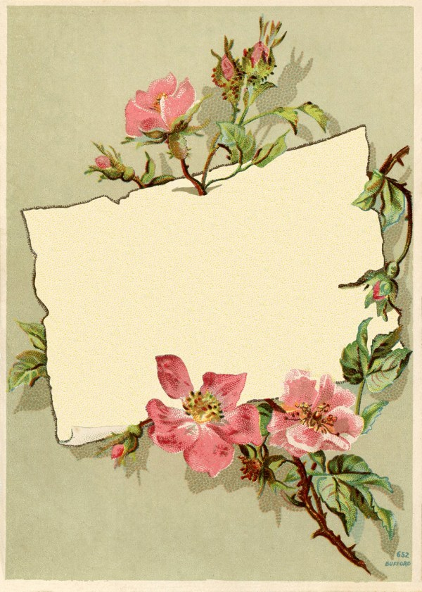Vintage Rose Frame Images - The Graphics Fairy