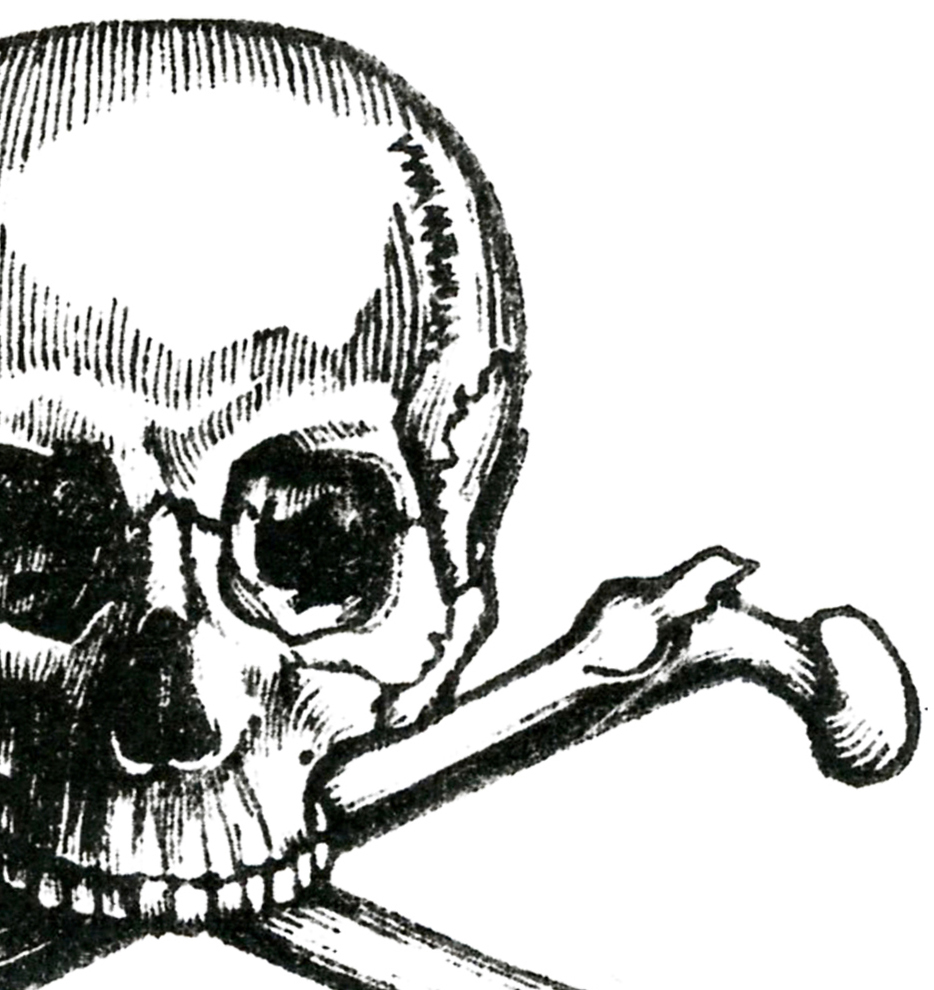 Early Halloween Image Skull And Crossbones The