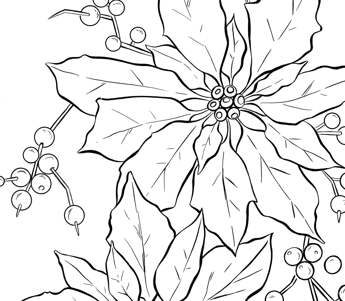 Poinsettia Line Art Graphicsfairy Thumb