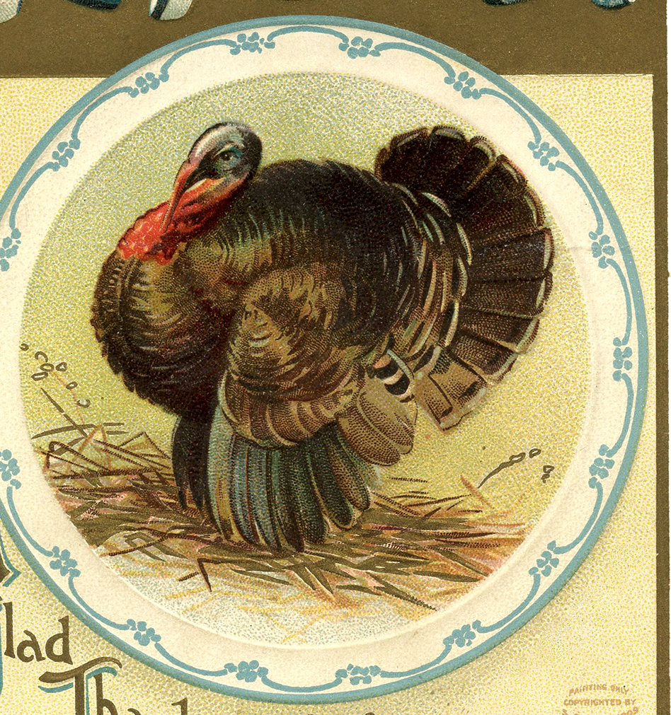 Vintage Thanksgiving Turkey Image The Graphics Fairy