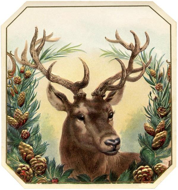 Free Vintage Christmas Image Deer - The Graphics Fairy