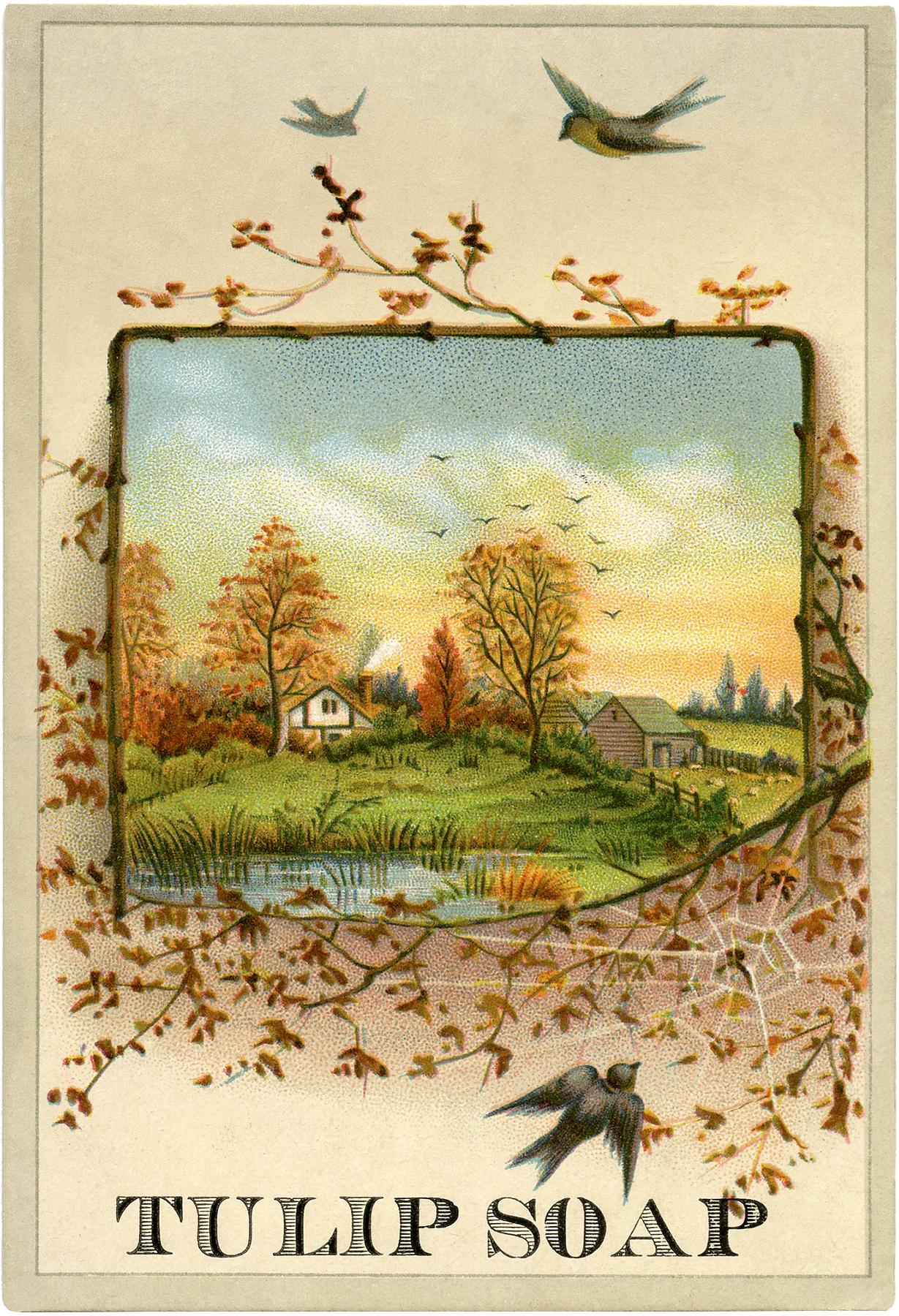 Pretty Autumn Scene Image The Graphics Fairy