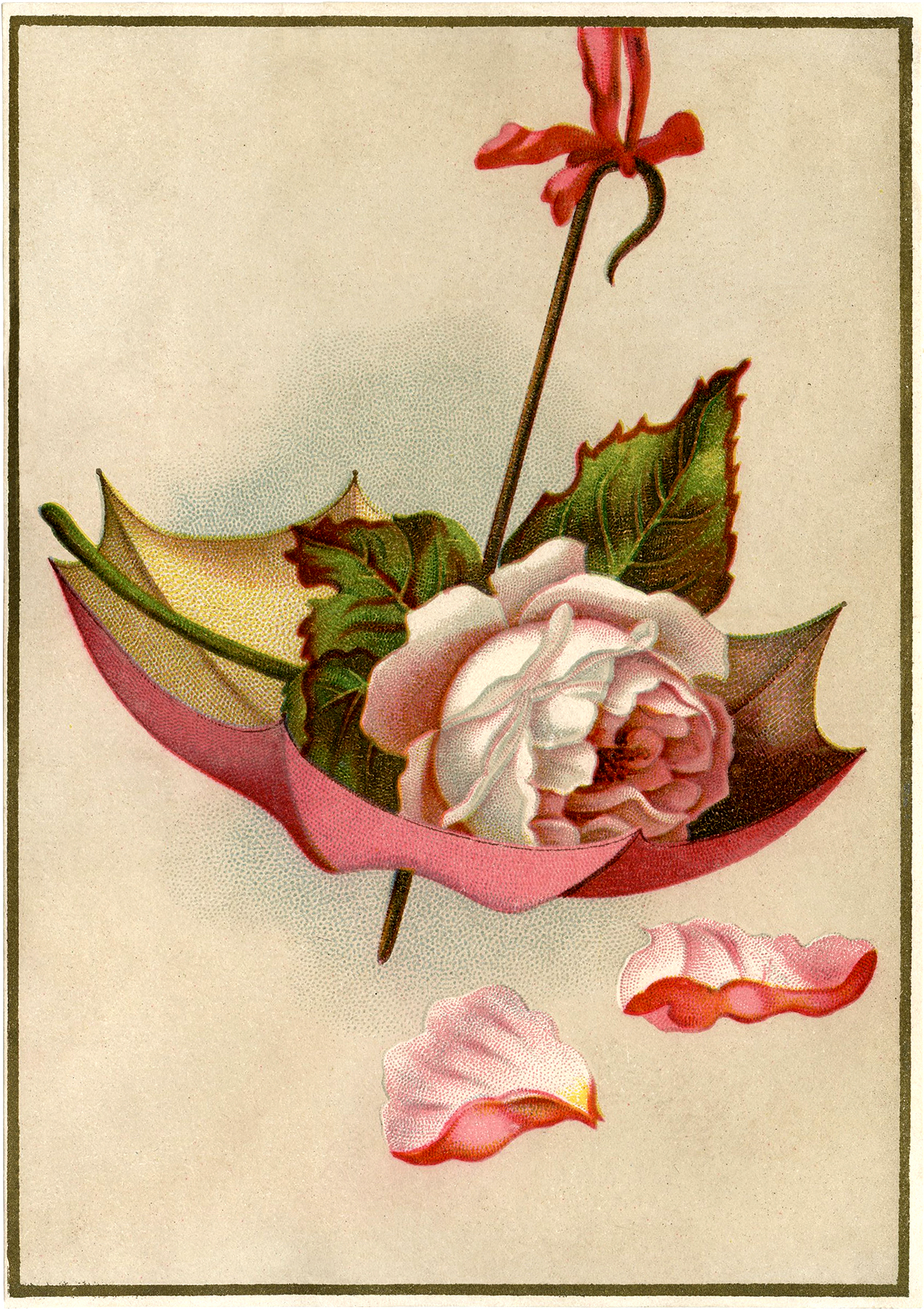 Vintage Rose Umbrella Image Gorgeous The Graphics Fairy