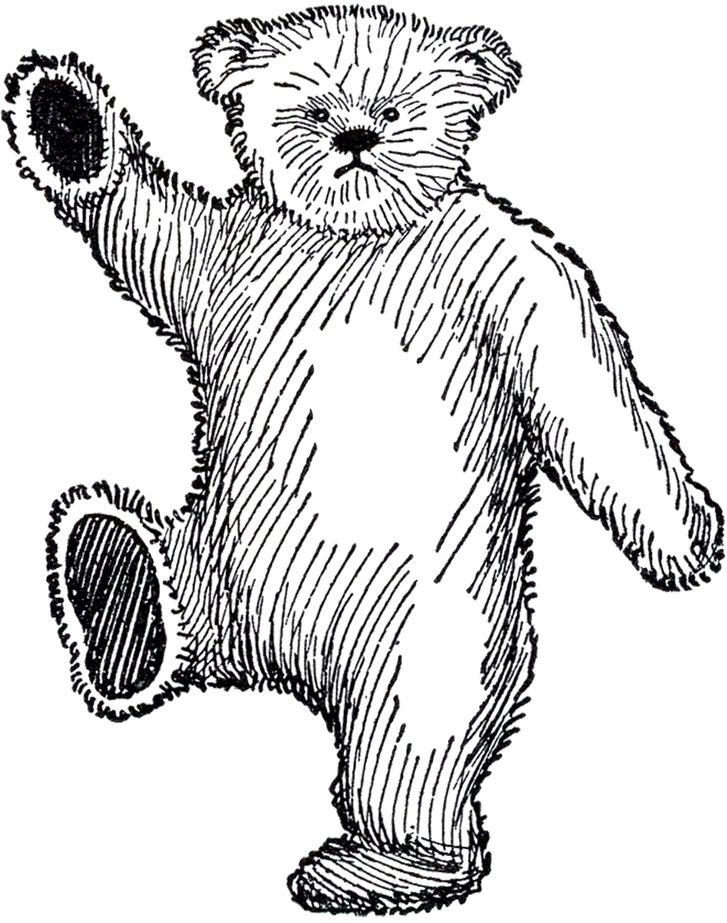 Public Domain Teddy Bear Image