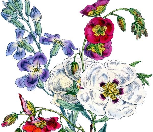 Gorgeous Vintage Floral Bouquet Image!