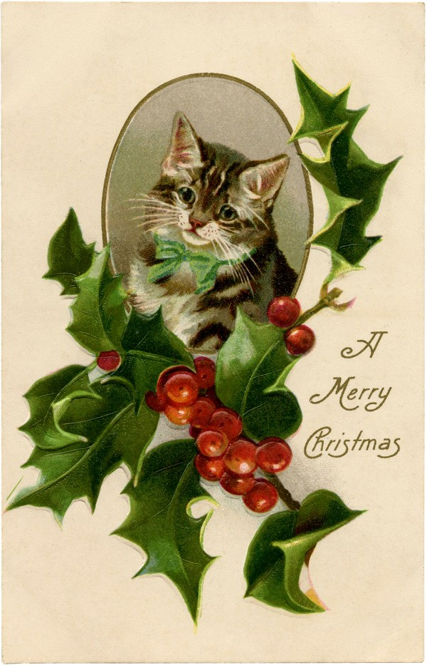 9 Christmas Cat Images - Free Clip Art - The Graphics Fairy