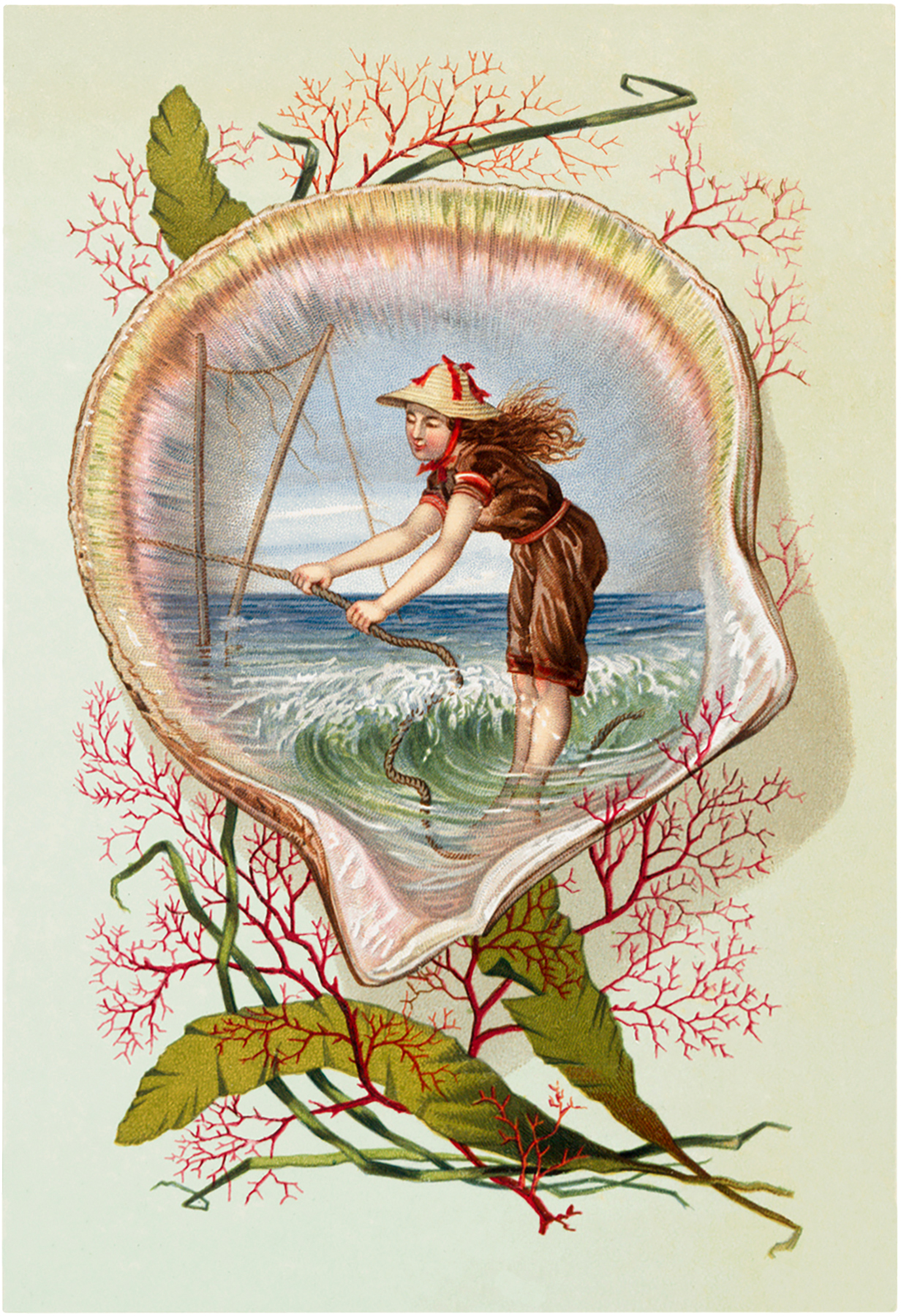 Vintage Seashell Scene Image The Graphics Fairy
