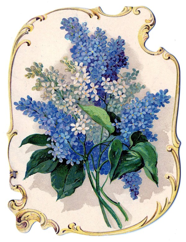 8 Free Clip Art Lilacs! - The Graphics Fairy