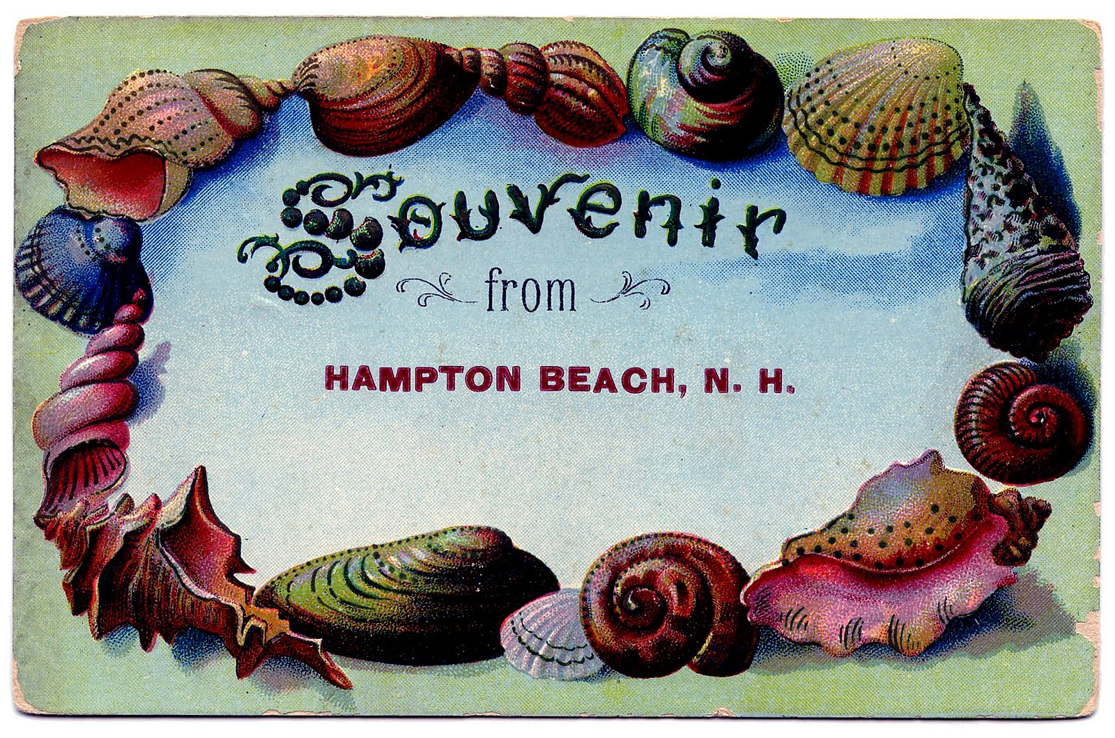 Vintage Clip Art Souvenir Seashell Postcard The