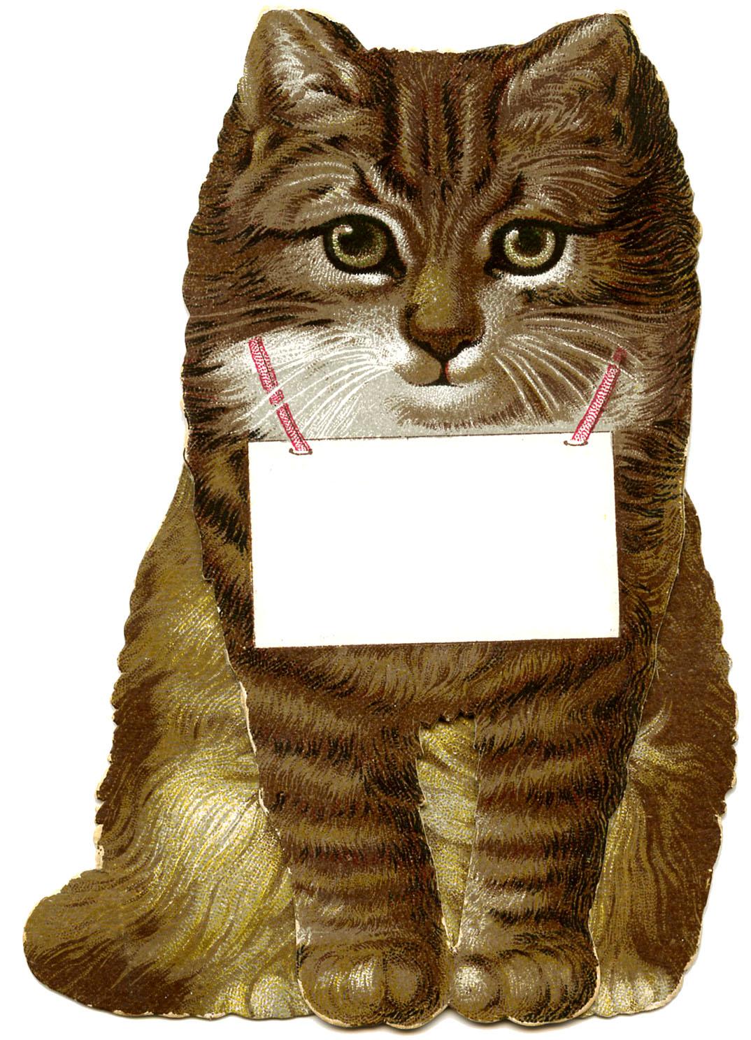 Vintage Clip Art Cutest Cat Image Ever The Graphics Fairy