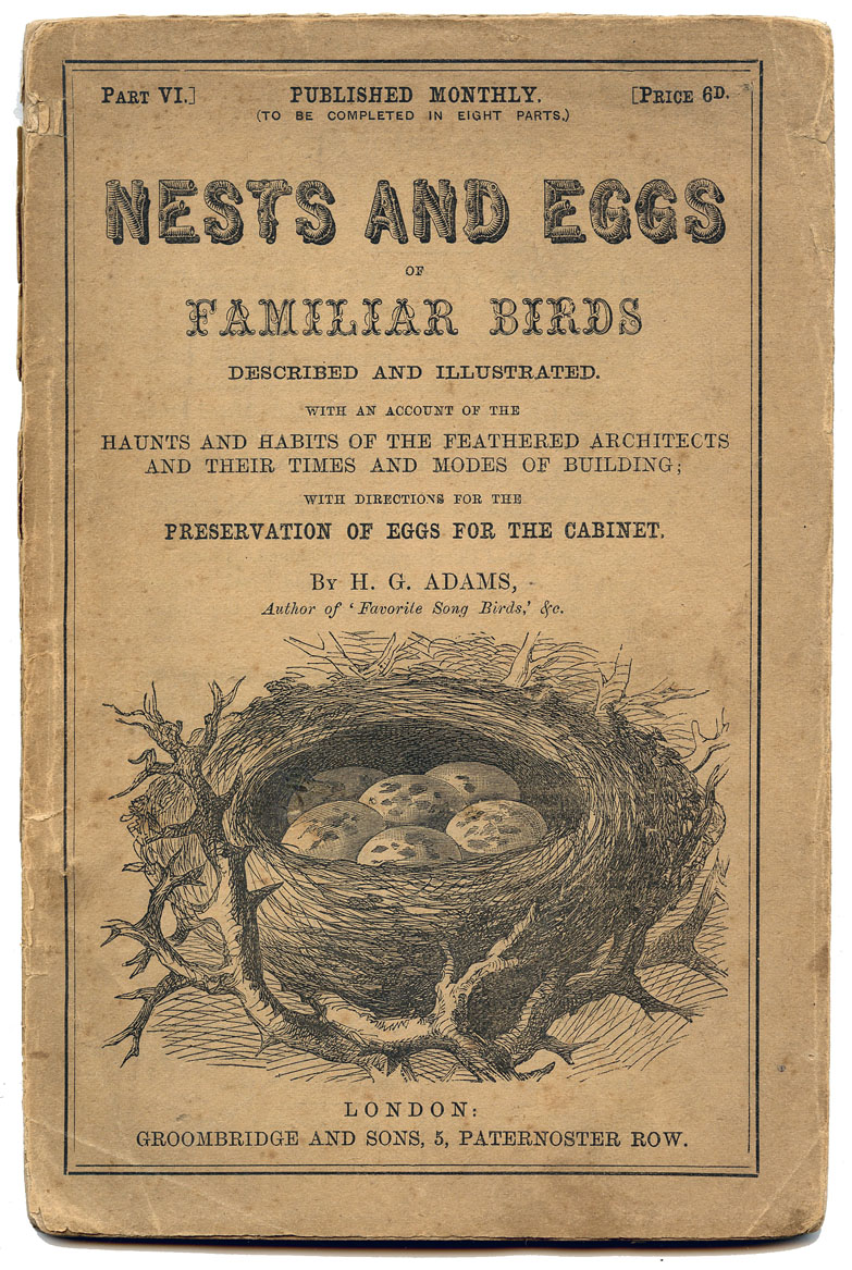 Antique Ephemera Printable Nests And Eggs Title Page