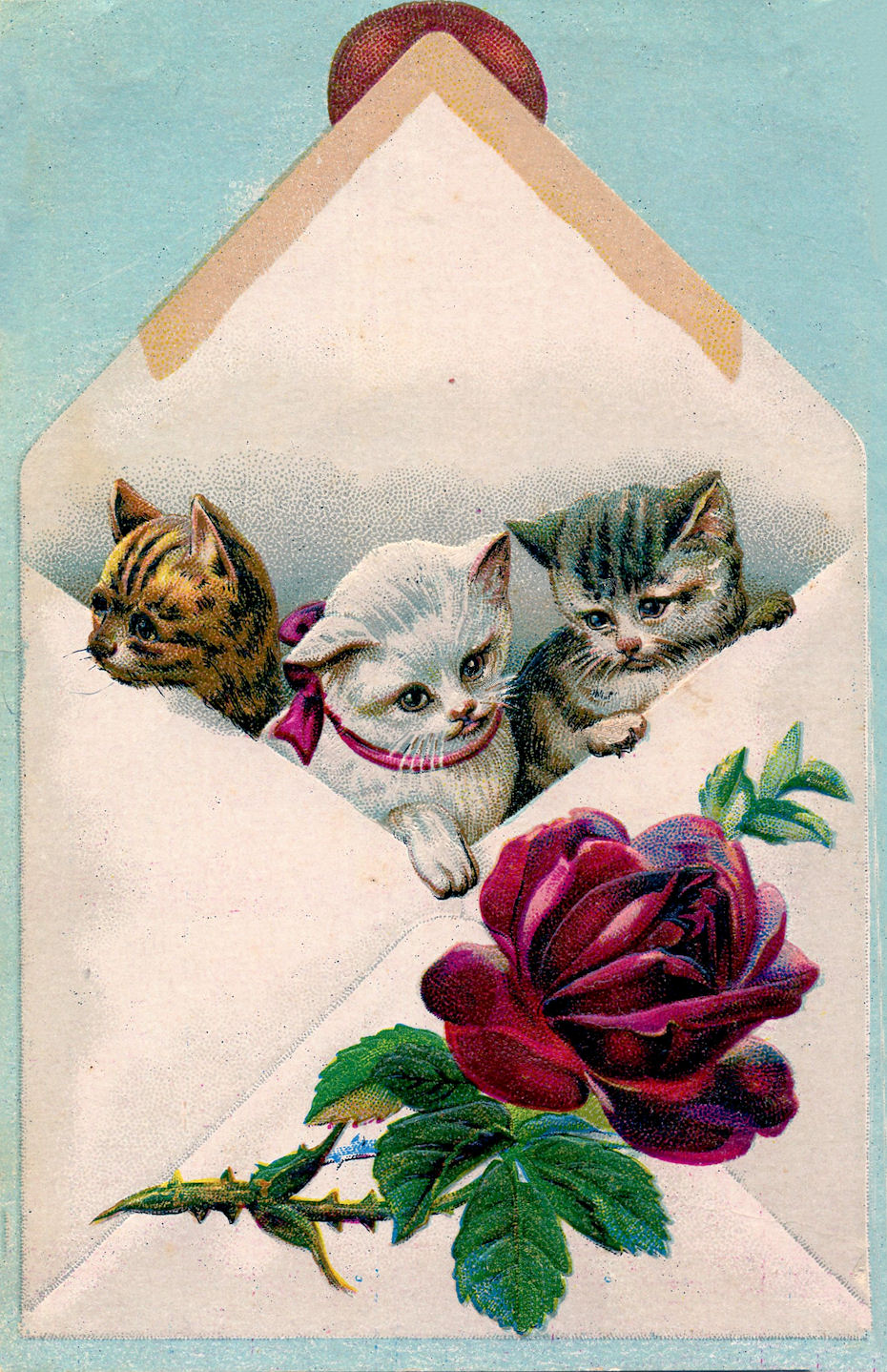 Vintage Image Cats In Envelope The Graphics Fairy