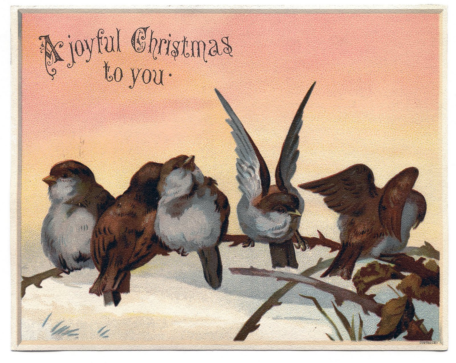 Vintage Christmas Graphic Image Cute Birds On Branch
