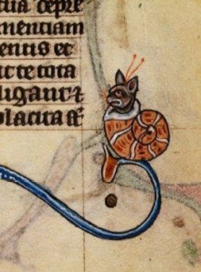 Cat in a Snail Shell 1400's Maastricht Book of Hours Stowe17f.185 Source: BritishLibrary, cats in books of hours, medieval cats