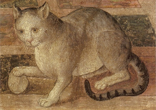 Cat, 1509, by Bernardino di Betto dit Il Pintoricchio, (1454-1513), (Detail from Penelope with the Suitors) National Gallery, London