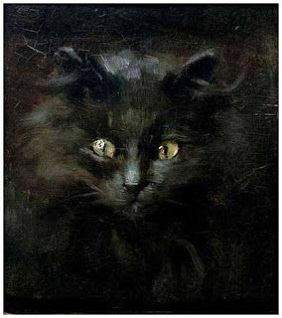 Black Cat Julius Adam II