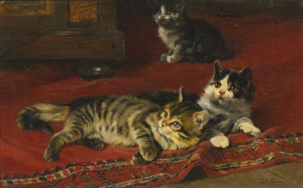 Three Kittens on a Carpet Julius Adam Private Collection