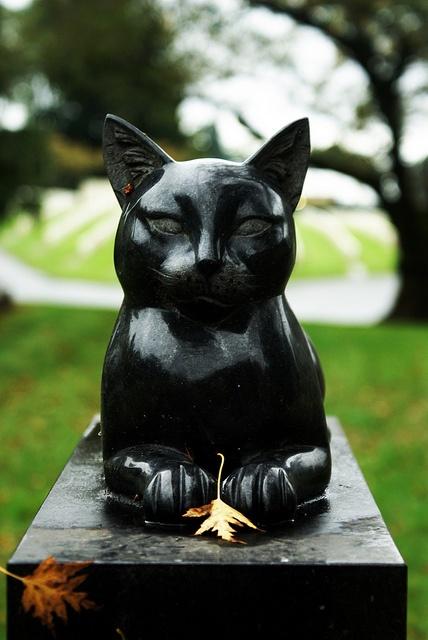 cat's tombstone