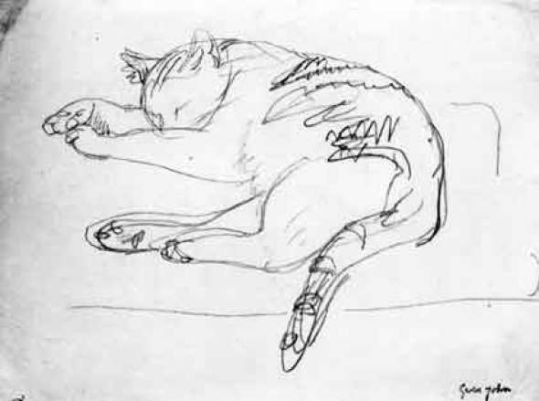 Cat Gwen John Pencil Sketch