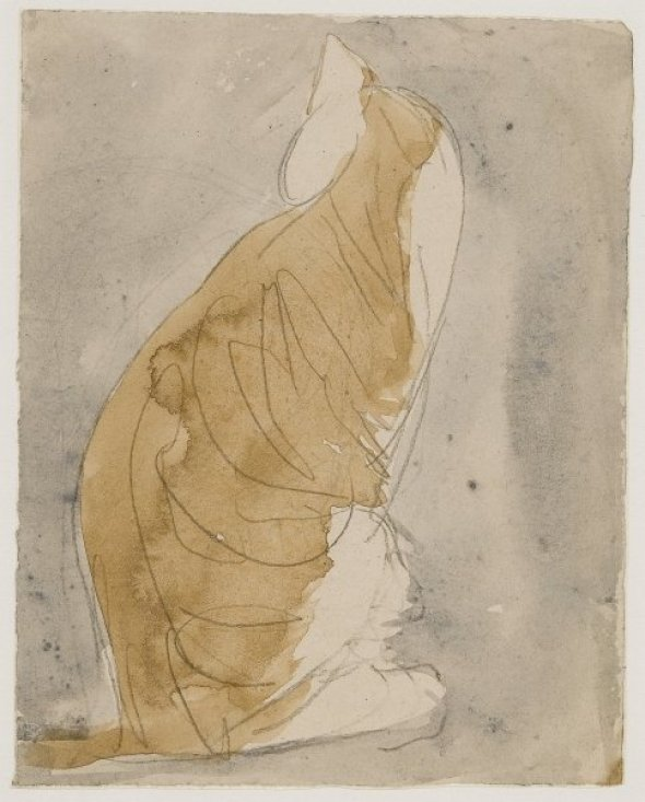 Study of a Cat Gwen John