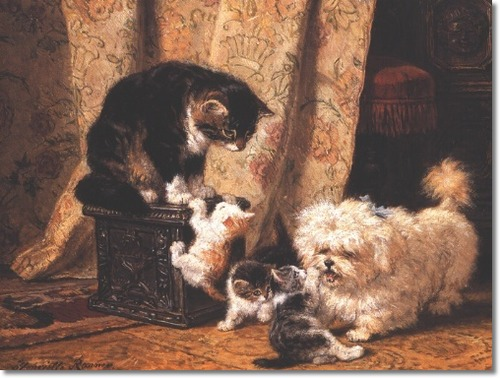 Best Friends-Kittens, Cat and Bichon Henriette Ronner-Knip Private Collection