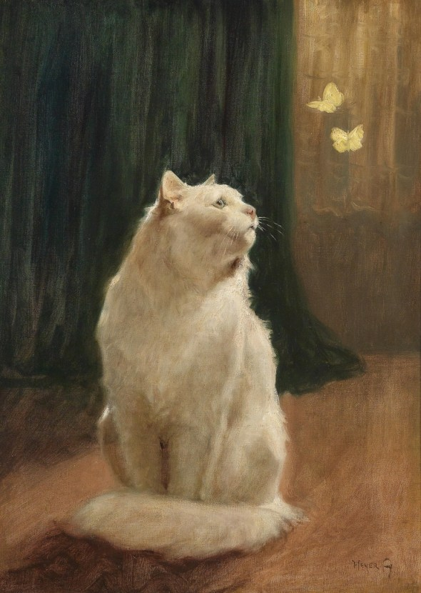 White Cat and Two Brimstone Butterflies Private Collection