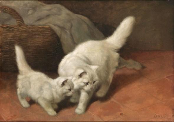 Katzen und Marienkäfer Private Collection