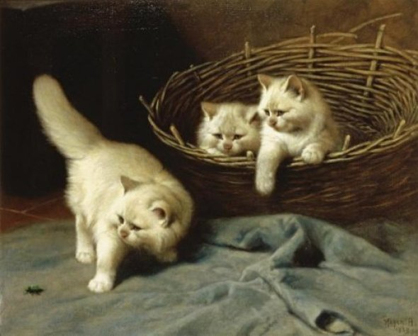 Three White Kittens and a Bug, Arthur Heyer