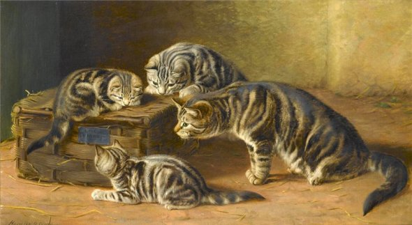 What's in the Box? Horatio Henry Couldrey Private Collection