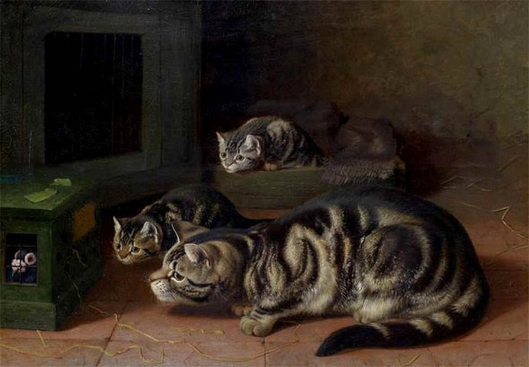 Curiosity Horatio Henry Couldery Private Collection