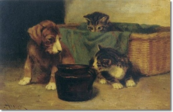 Puppy and Kittens Private Collection