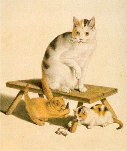 Katzen Gottfried Mind Private Collection cats in art