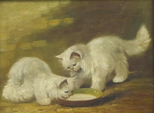 Two White Cats Brunel de Neuville