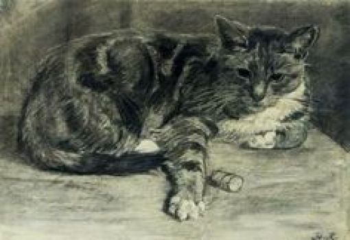 A Cat Henriette Ronner Knip Charcoal on Paper 1870