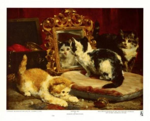 Kittens Charles van den Eycken private collection