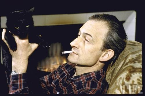 Balthus cats