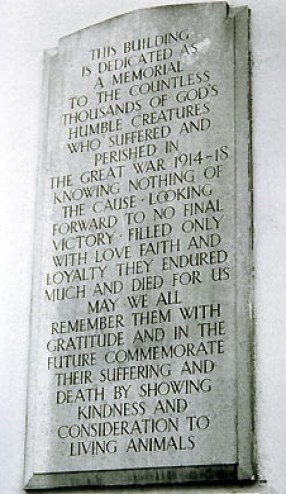 Plaque in memory of animals sacrificed during the First World War. Situated at the Memorial Dispensary in Kilburn, north west London, cats in war, cats in WWI