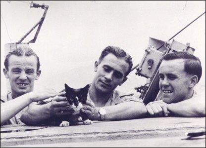 Simon the Cat with Crew of HMSA Amethyst