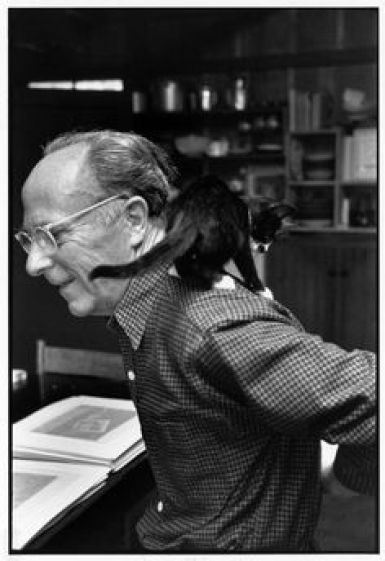 Weston with a cat on his shoulder, cats in photography