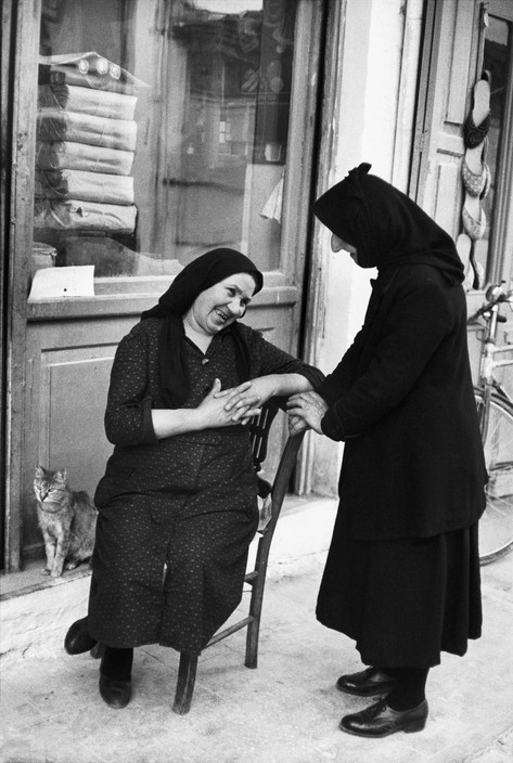 Cat Thessalia, Greece 1961, Henri Carter-Bresson