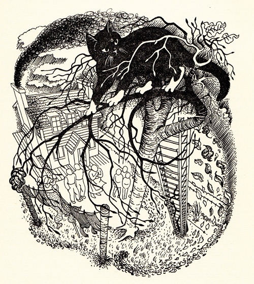 From 'Cat Up a Tree' by William Sansom Illustration by Eileen Mayo
