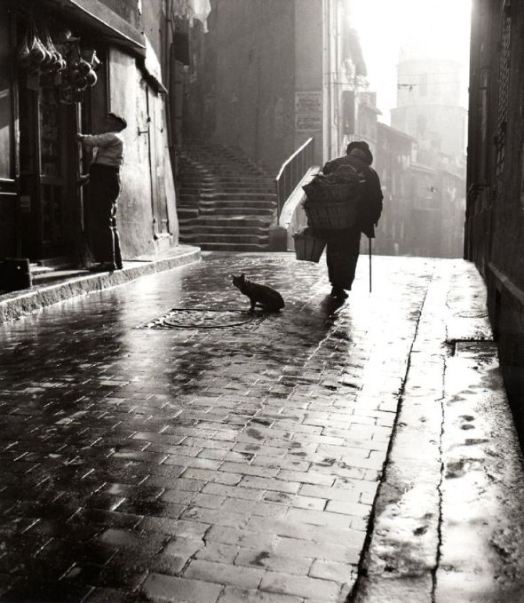 Cartier-Bresson, cats in photos