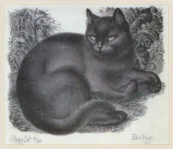 Eileen Mayo, Sleepy Cat