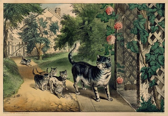 Pussy's return 1874-8, met mus of art