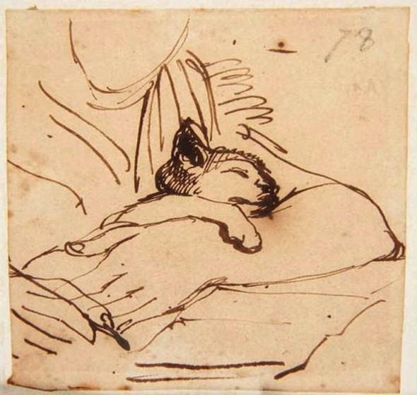 Kitten Sleeping in the Arms of Madame Ingres