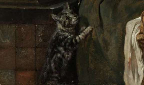 Detail Woman Feeding her Cat Gabriel Metsu