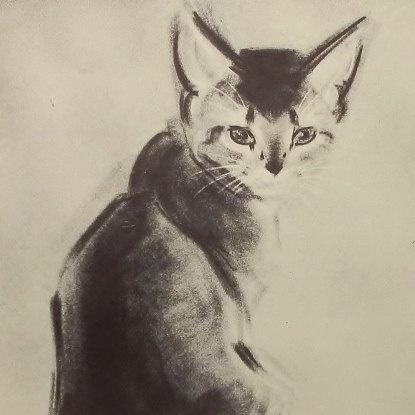 C. Turlay Newberry, Abyssinian kitten