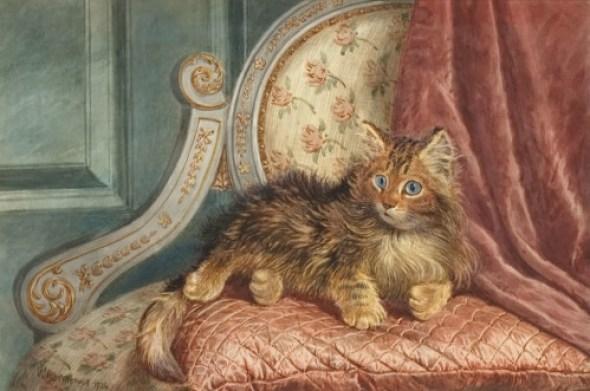 Kitten on a chair Wilson Hepple