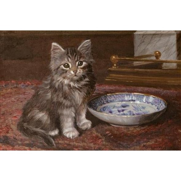 The Kitten had the Cream, Wilson Hepple