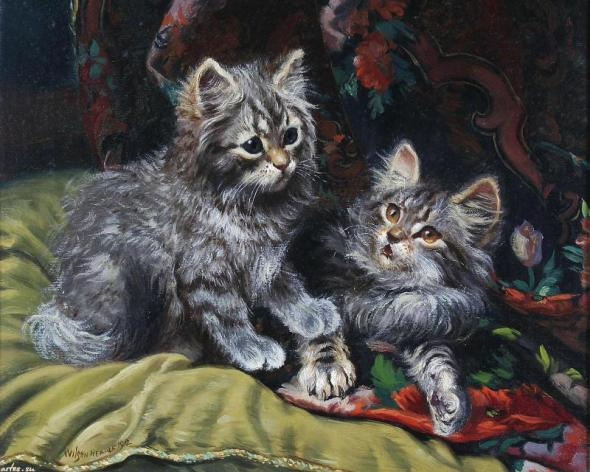 Two grey kittens Wilson Hepple